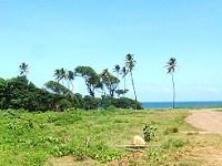 Land for Sale at Melville Hall Estate