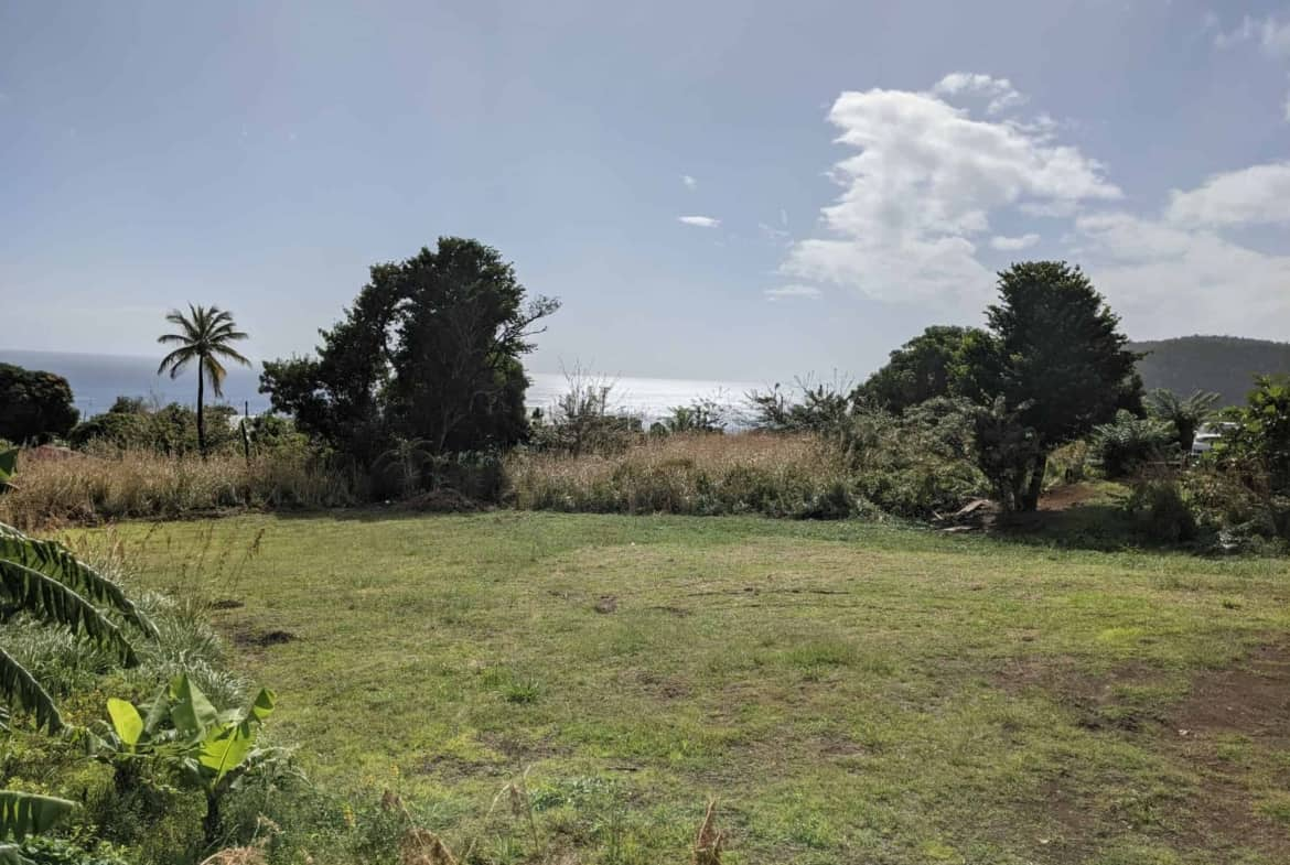 Lot For Sale At Cotton Hill